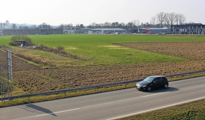 Die große Landwirtschaftsfläche zwisch... Flächennutzungsplan geändert werden.   | Foto: mario schöneberg