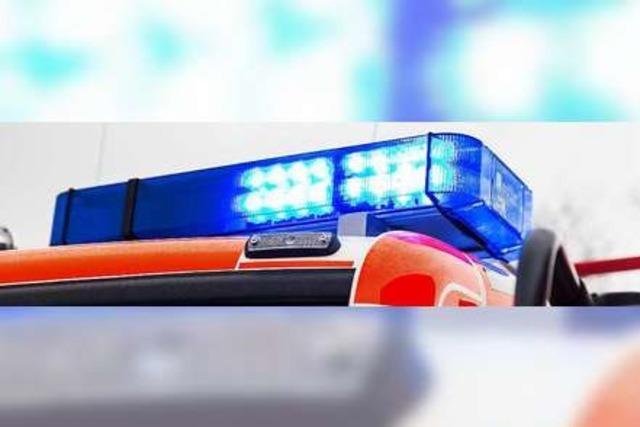 BZ erklärt die Fahrzeuge der Freiburger Feuerwehr