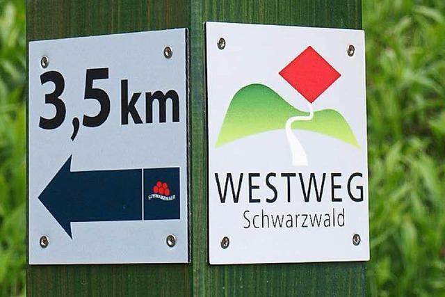 Gefährdet die Windkraft den Wandertourismus im Schwarzwald?
