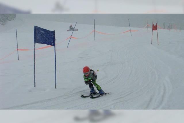 Schul-Skimeisterschaften