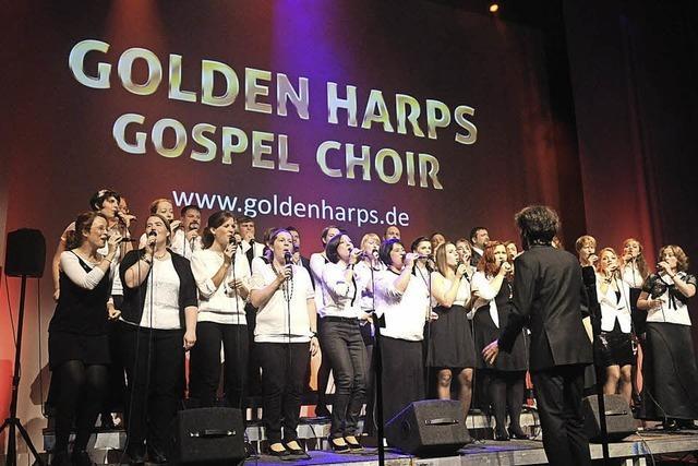 Golden Harps in Tutschfelden
