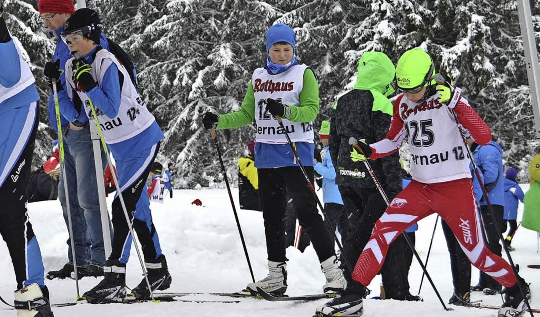 Andrang beim Rechberg-Pokallanglauf in Bernau    Foto: Helmut Junkel