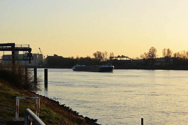 Auto landet im Rhein – Insassen retten sich aus eiskaltem Wasser