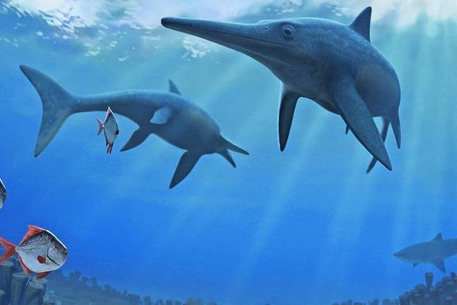 Am Tod der Fischsaurier schuld?