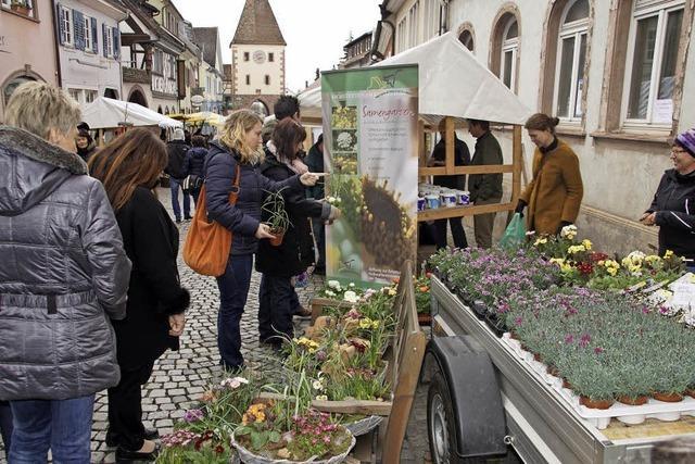 Reges Interesse am Markt für antike Gegenstände