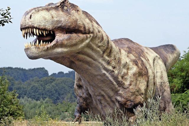 Wissenschaftler finden Methode zur Geschlechtsbestimmung bei Dinosauriern