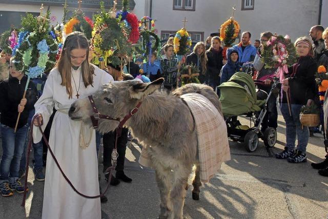 Palmprozession mit einem Esel