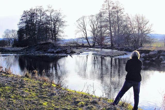 Besucher stören den Naturschutz in der