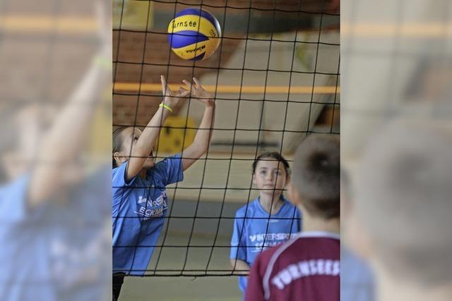 Volleyball-Schulturnier