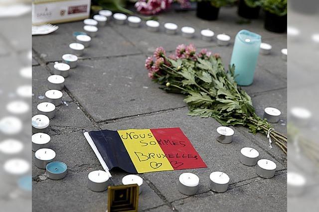 Deutsche Politiker drücken Belgiern Mitgefühl aus