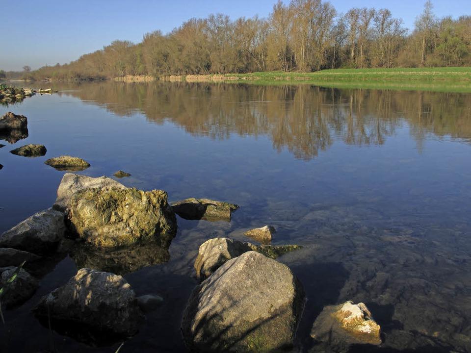 Zu Fuß oder mit dem Rad am Altrhein un... viele scöne Aussichten auf den Fluss.  | Foto: Jutta Schütz