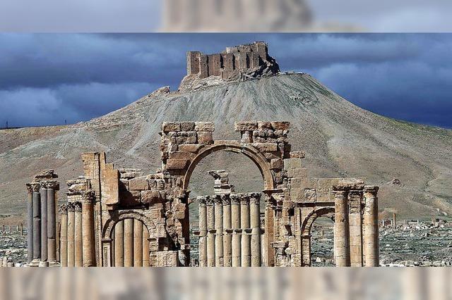 IS wird aus Palmyra und Mossul zurückgedrängt