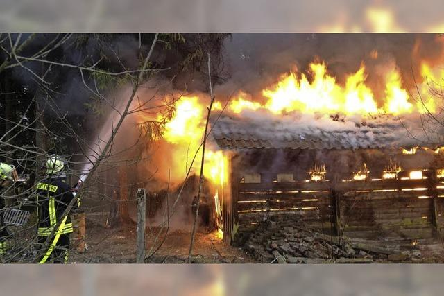 Hütte im Hännermer Wald wird Raub derFlammen