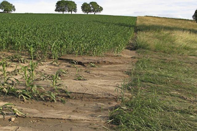 Erosionsgefährdung ist hoch