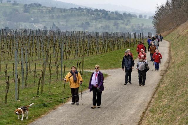 Volkswandertag in Wallburg