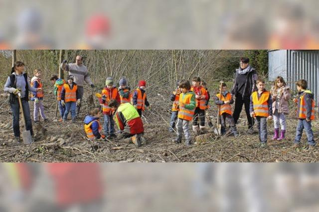 Kinder pflanzen Bäume am Mühlbach