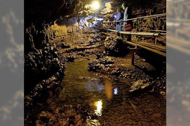 Saisoneröffnung für Tschamberhöhle und Geo-Dinkelbergmuseum
