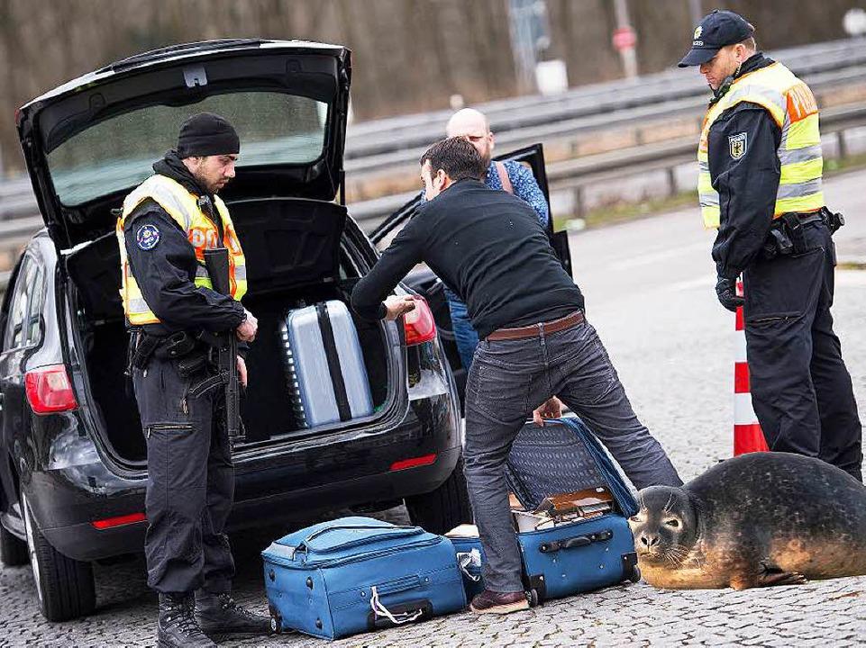 Ein Seehund als Drogenschnüffler? Das ...n Aprilscherz der Bremer Polizei sein.  | Foto: Marius Becker