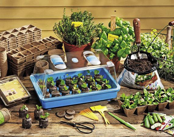 haus garten nutzgarten schon erste ernten im april badische. Black Bedroom Furniture Sets. Home Design Ideas