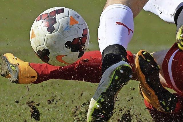 Bündnis 90/Grüne stellen Antrag, das Thema Sportstätten-Verlagerung aufzugeben
