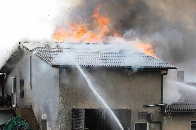 Bauernhof in Flammen – alle Tiere aus Stall gerettet