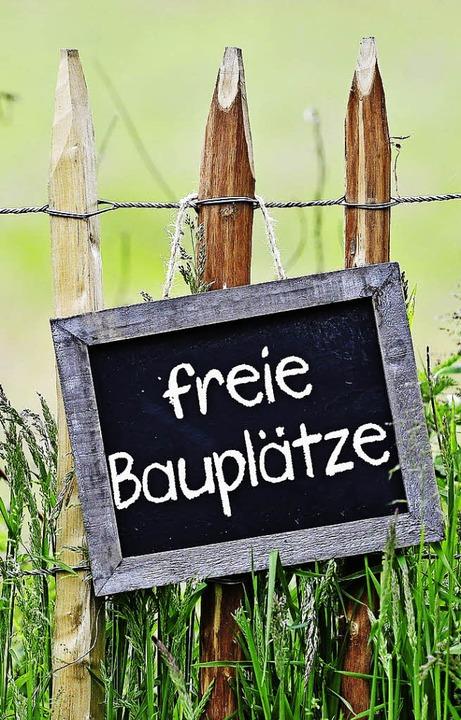 Nicht alle freut  unbebautes Bauland   | Foto: Marco2811 (fotolia.com)