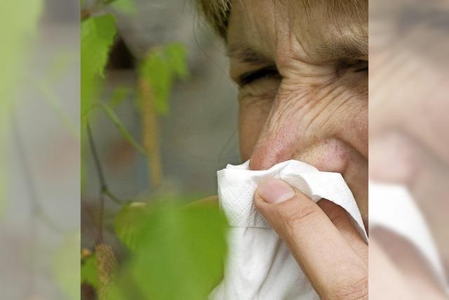 Pollenfilter austauschen