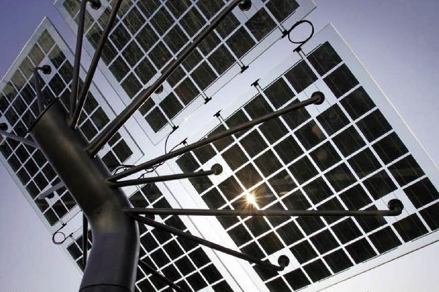 Solarenergie aus dem eigenen Garten