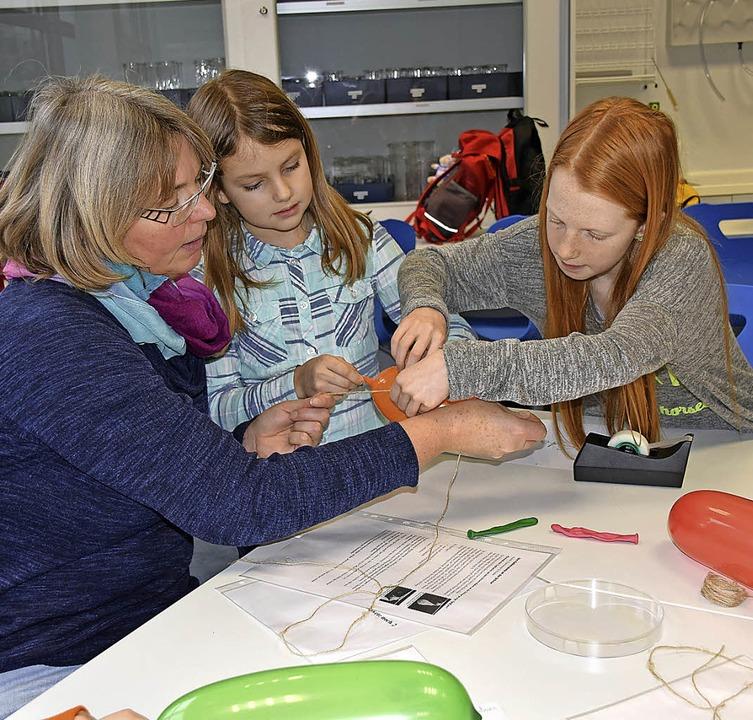 Moderne Unterrichtsbedingungen wie in ...r den Chemieunterricht am Gymnasium.    | Foto: Sarah Nöltner