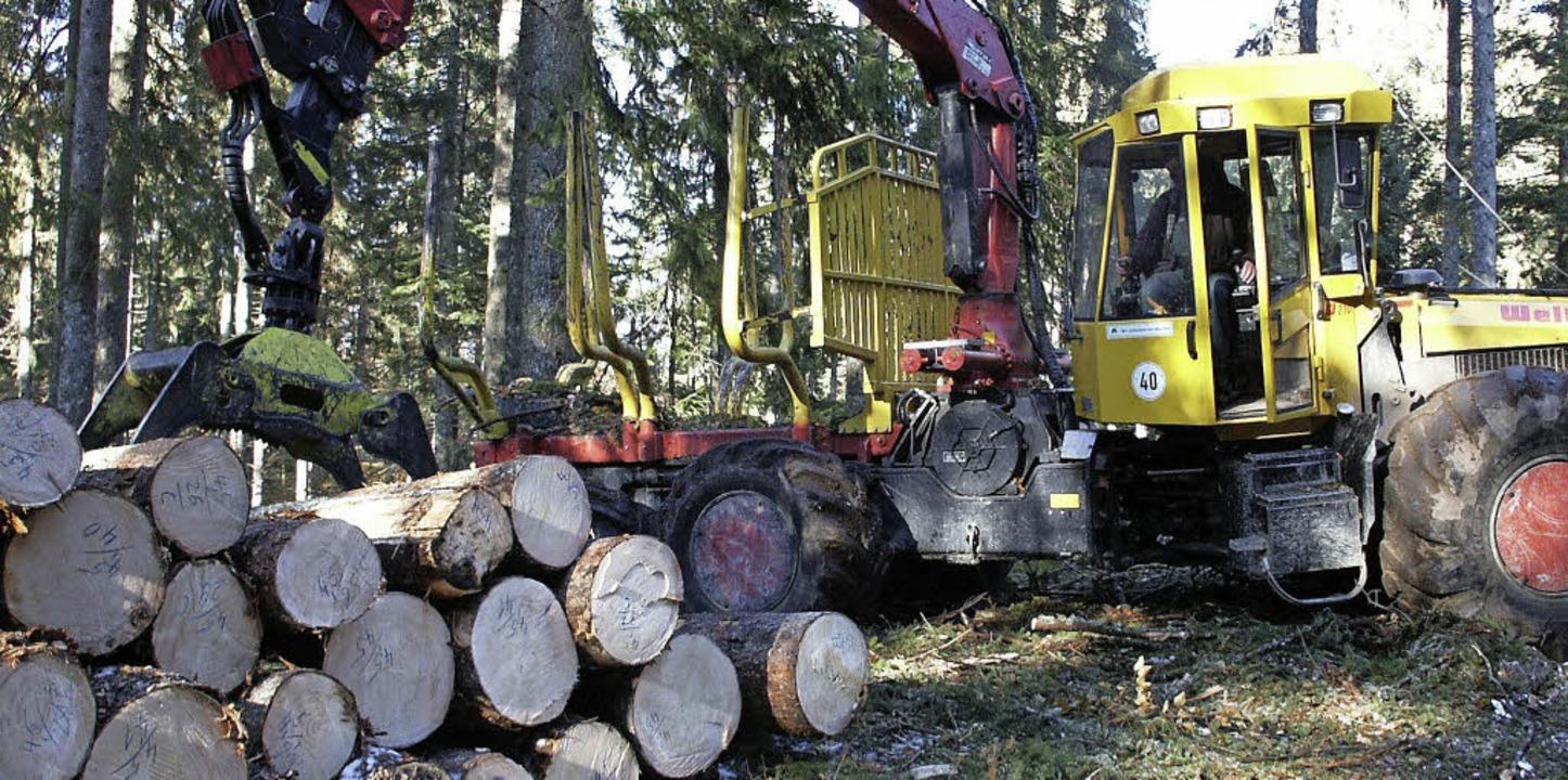 4335 Festmeter Holz sind Bereich der F...r die Mitglieder 347000 Euro erlösen.   | Foto: Archivfoto: Sahli