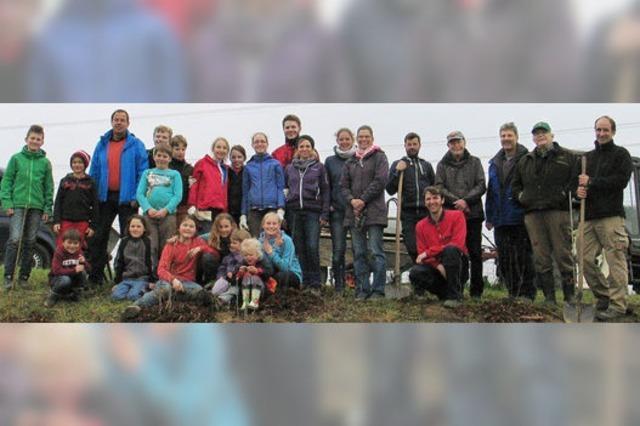 350 Wildsträucher sowie etliche Obstbäume gepflanzt