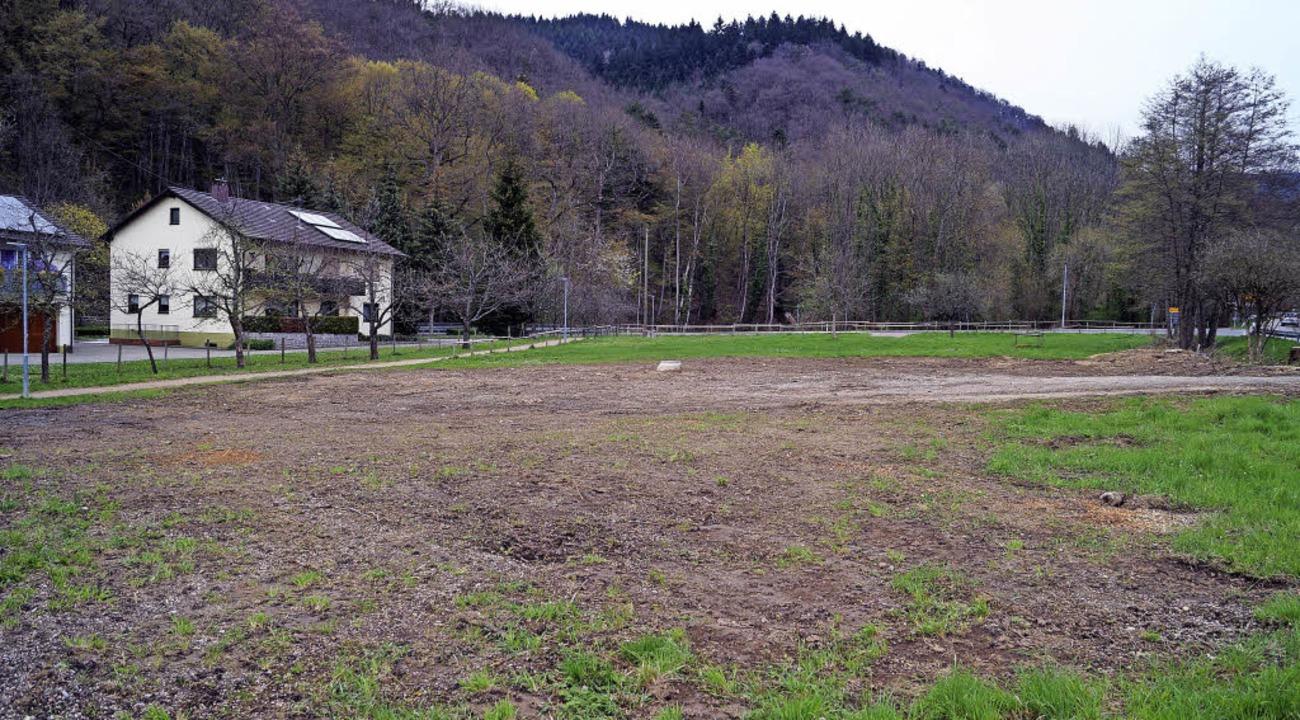 Die Parkplatzwiese an der Abzweigung d...en Sportbadparkplatz ausgebaut werden.  | Foto: Silke Hartenstein