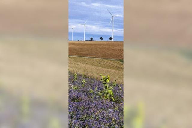 Ein Konzept für Windkraft