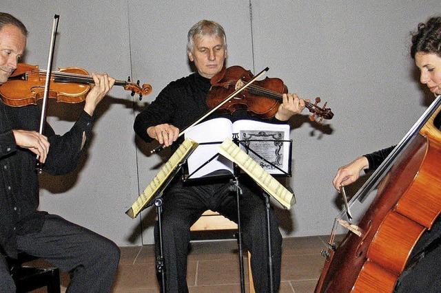 Goldbergvariationen mit Streichern statt Cembalo