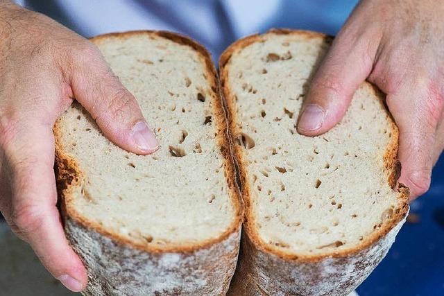 Frau vertreibt aufdringlichen Nachbarn mit Brot
