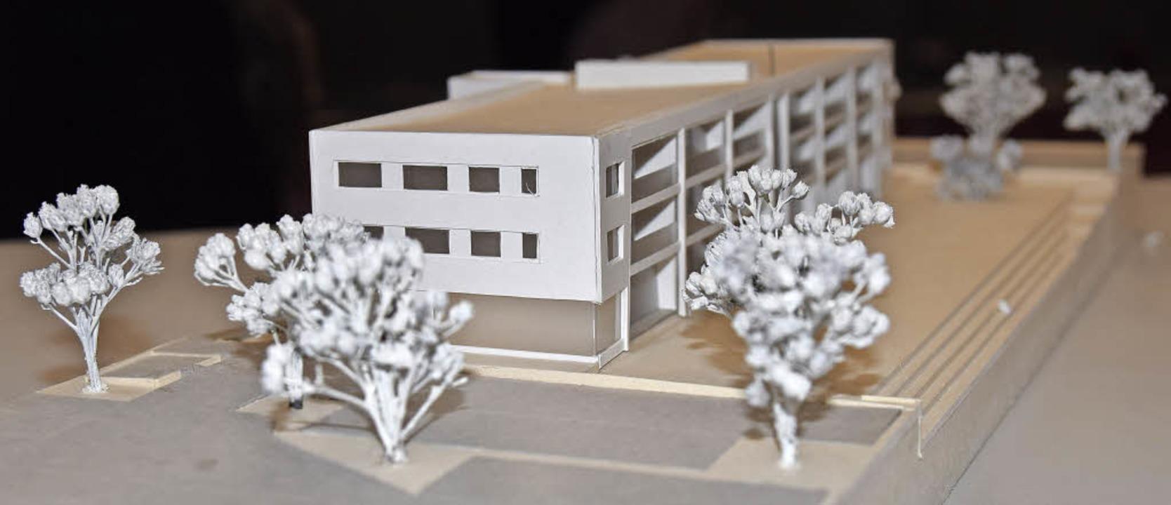 Ein Modell des geplanten Auggener Mehr...  das Besondere an dem  Projekt sein.   | Foto: Ehrlich