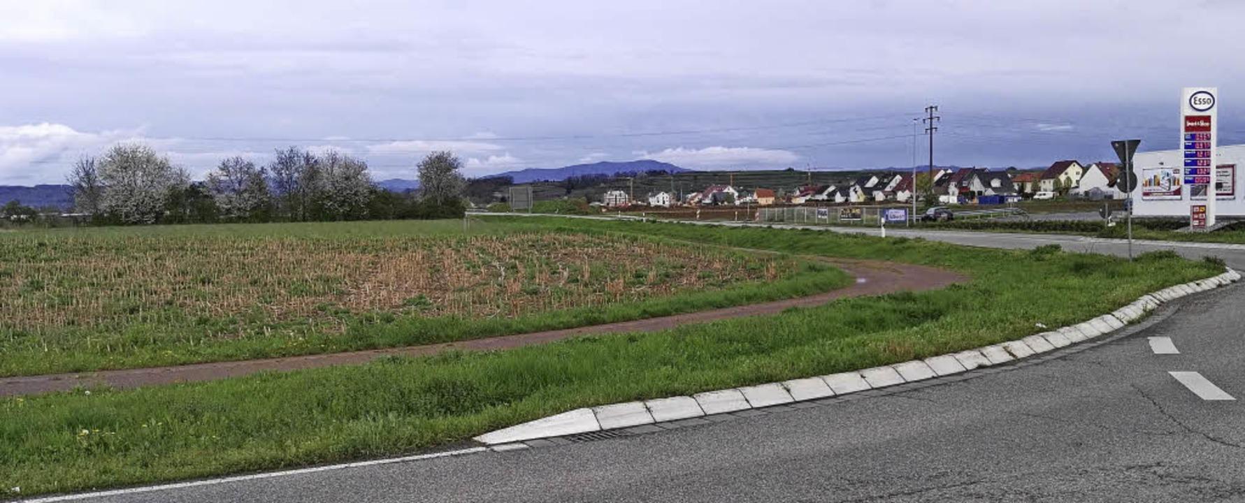 Auf der Nordseite der L 113 beabsichti...zt, steht aber am 20. April erneut an.  | Foto: Martin Wendel