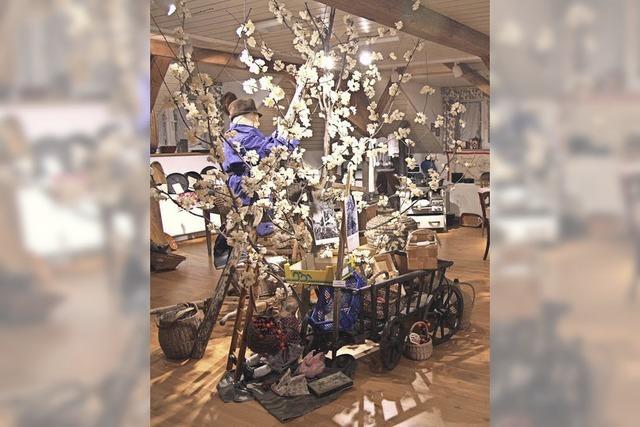 Kirschenmuseum ist ein Magnet