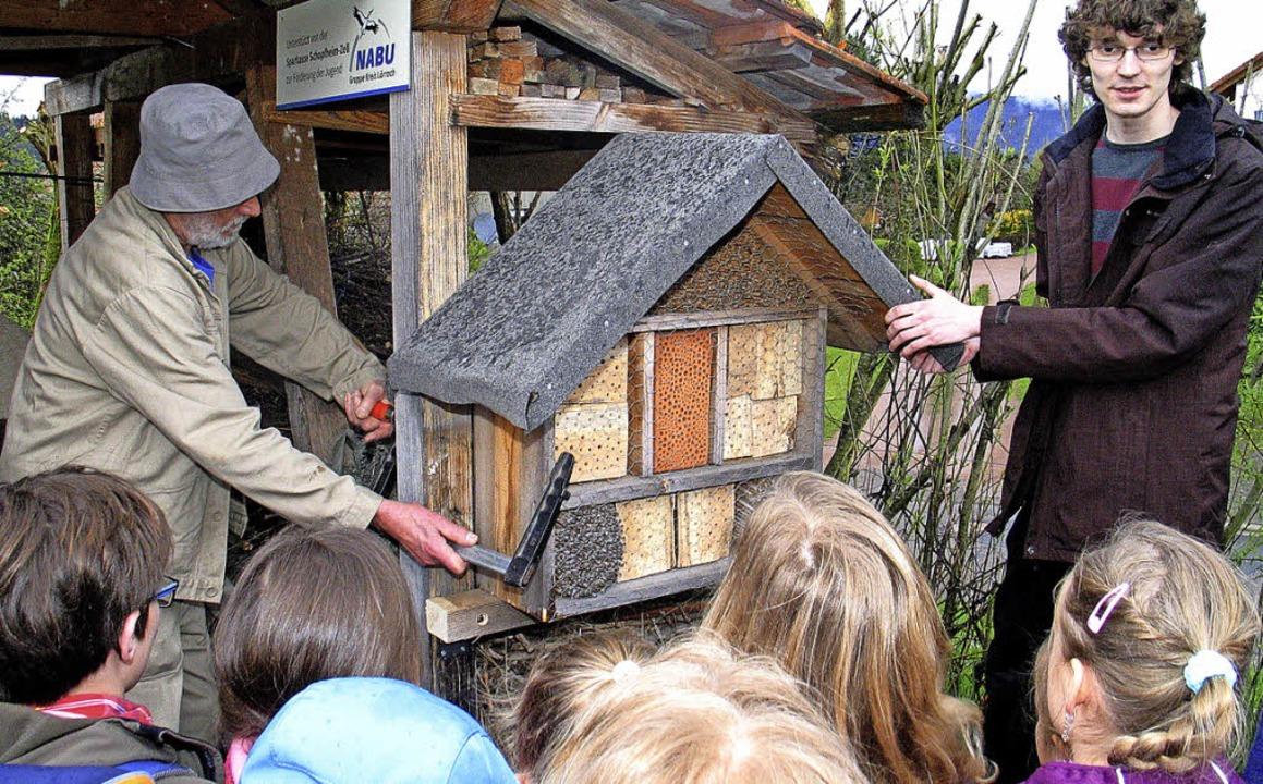 Der Naturschutzbund  stellte im Garten...ldbienenhaus zusammen mit den Kindern.  | Foto: Ounas-Kräusel
