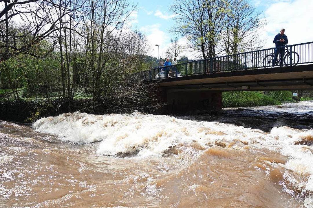 Dreisam Hochwasser