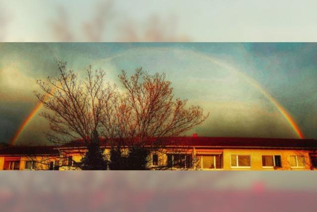 Polaroid-Regenbogen in Littenweiler