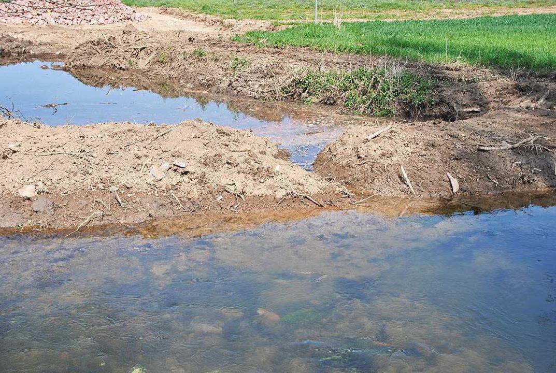 Eine Woche vor dem Hochwasser: Hier gr...die Senke und die angrenzenden Felder.  | Foto: Manfred Frietsch