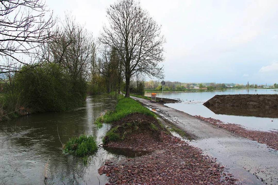 Links der Mühlbach in seinem gewohnten...stelle, rechts die gefluteten Flächen.  | Foto: Horst David
