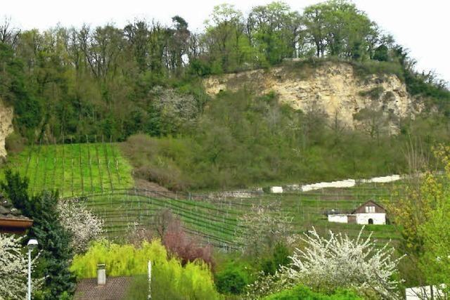 Grenzacher Wein mundet schon lange