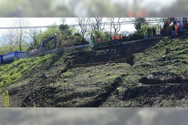 Anwohner: Rodung ist schuld - Bahn weist Vorwürfe zurück