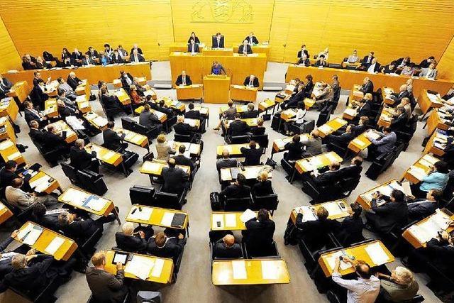 Neuer Landtag: AfD soll keinen Vize-Posten bekommen