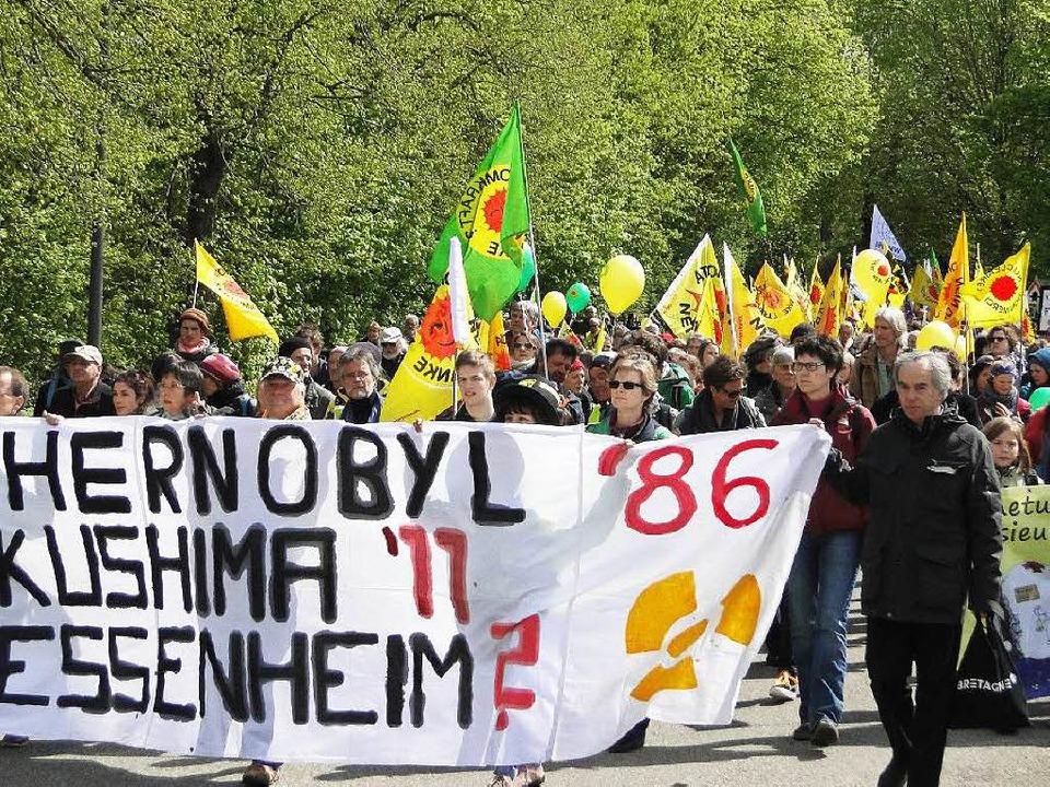 Anti-Akw-Demo in Breisach  | Foto: Elisabeth Saller