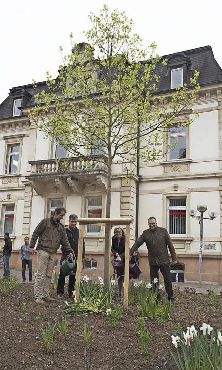 Symbolisch angegossen wurde der Tulpen...irektor Ulrich Feuerstein (von links).    Foto: Volker Münch