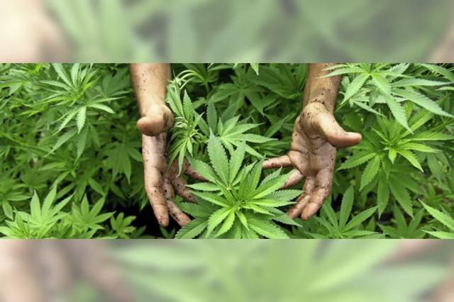 1200 Euro Strafe für Drogenbesitz