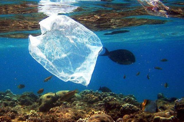 Jetzt will auch der Handel gegen Plastikmüll vorgehen